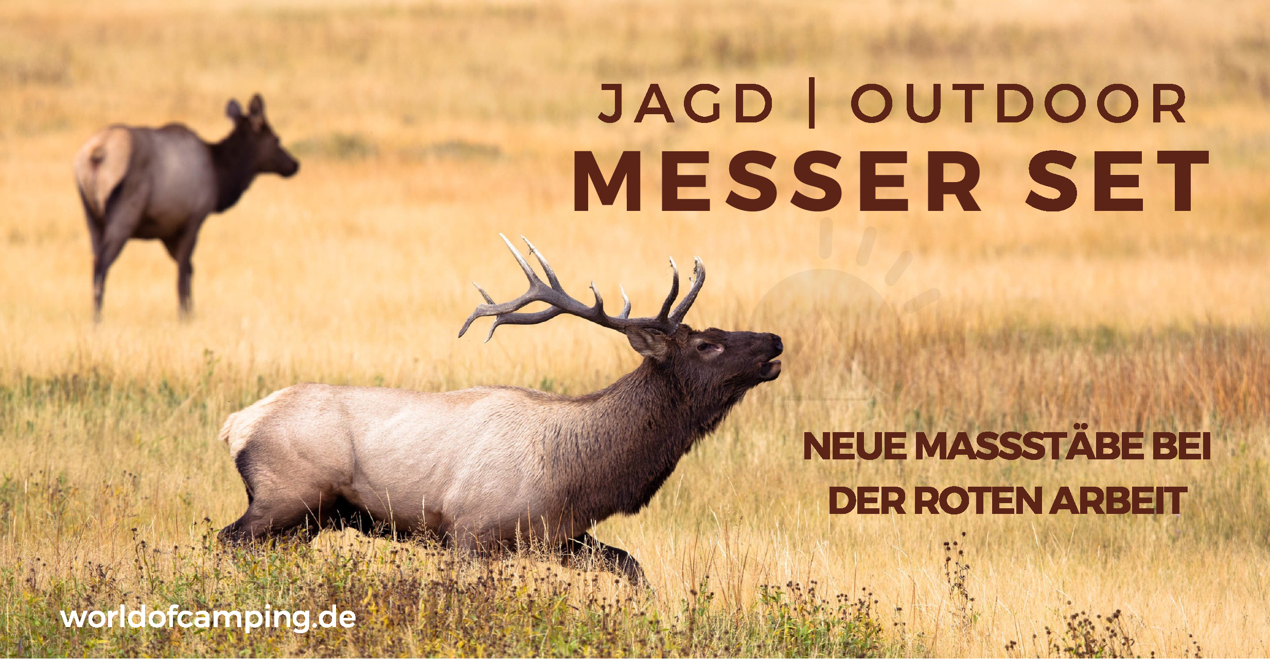 Dick Messerset Gekösemesser Jagd Outdoor